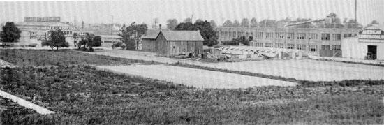 Shoemaker field