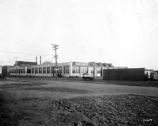 Hupp factory Lycaste