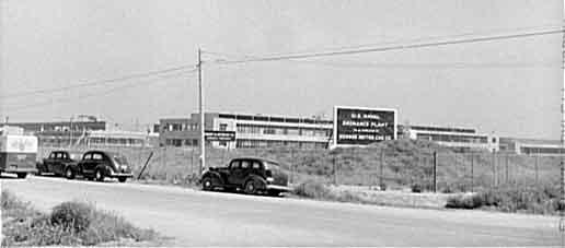 Navy Plant