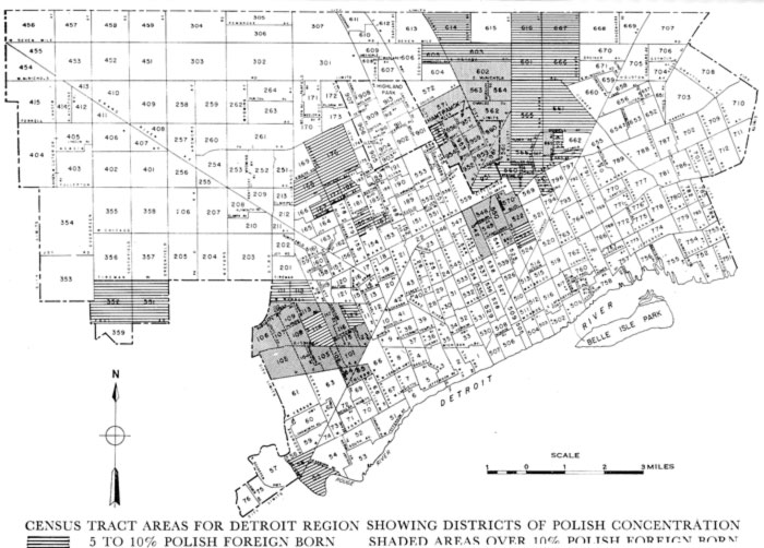 Polish density map of Detroit