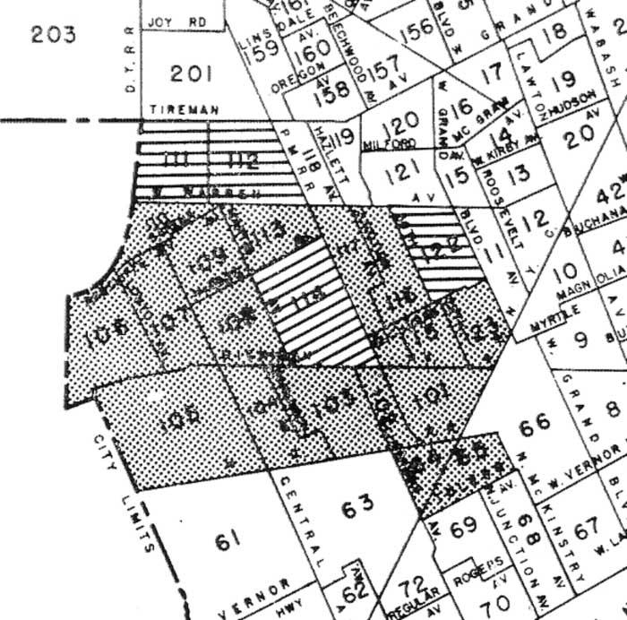Polish density map of Detroit West
